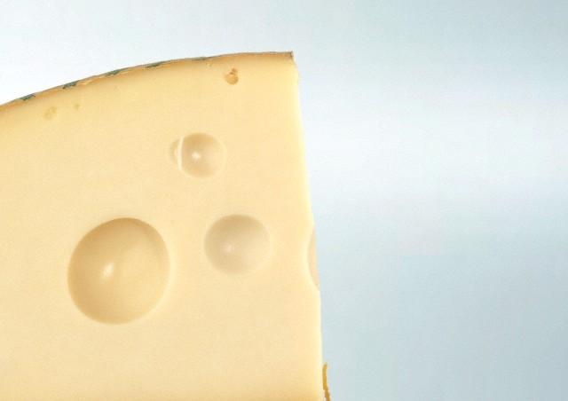 Close-up view of cheese, studio shot
