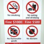durian proibito